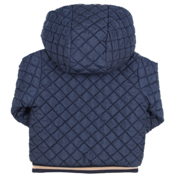 Gymp padded jacket with hood back detail