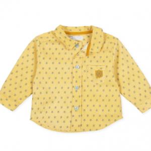 Tutto piccolo casima button down shirt